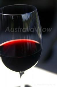 オーストラリアを代表する赤ワイン「シラーズ」