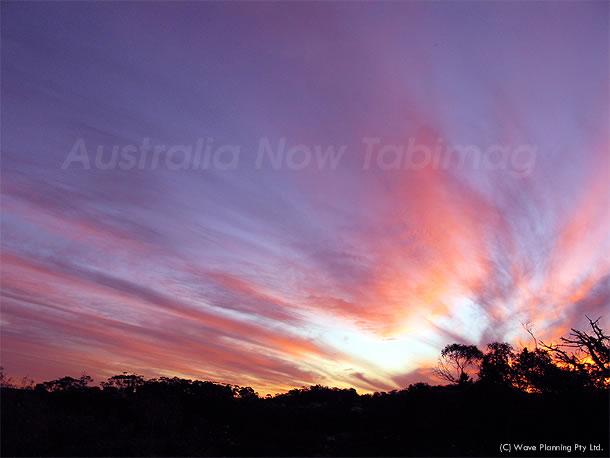シドニー郊外の美しい落日 2010年8月18日