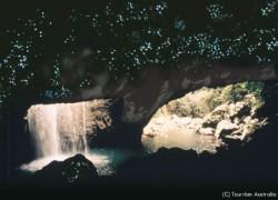 飛行石が輝く洞窟に似ているツチボタル(土ボタル)の洞窟