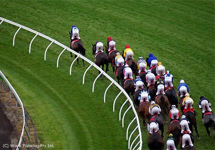 日本の馬が参戦することも多いメルボルンカップ