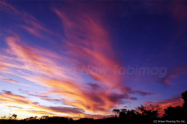 炎のように空高く舞い上がる夕焼け雲 2010年12月17日
