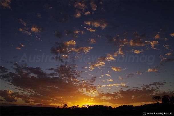 シドニーの暑かった一日 2011年1月24日