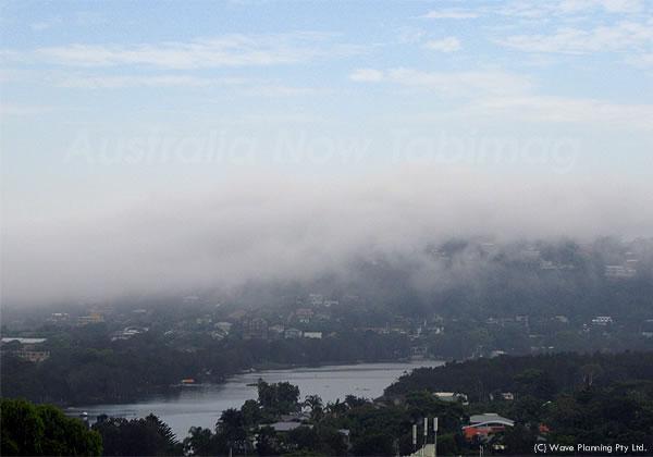 朝靄に煙るシドニー郊外の湖 2011年1月26日