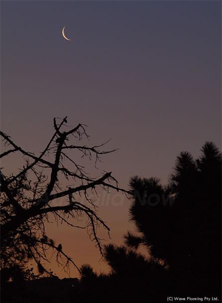 夕闇にとけ込む南半球の三日月 2011年3月8日