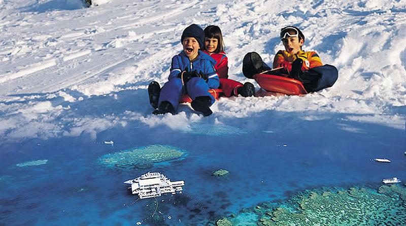 雪遊びの後は世界最大のサンゴ礁グレートバアリーフへ