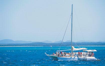 シドニー湾発着のホエールウォッチングクルーズもある!