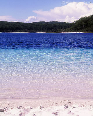 世界最大の砂島「フレーザー島」