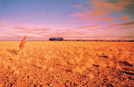 世界最長のまっすぐな鉄道「インディアンパシフィック号」
