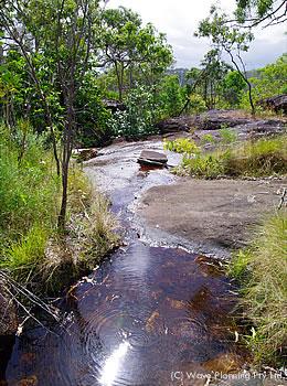 自然から多くのことを学ぶアボリジニの聖地を往くウォーキング・ツアー