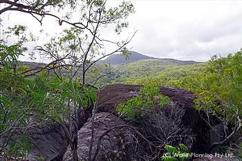グラニットの岩場と固有種が生い茂る森が広がる聖地