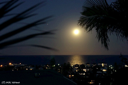 月夜。@シドニー北部のビーチ 2013年4月26日