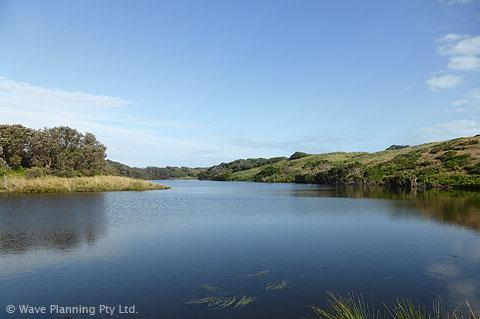 美しいスワンレイクは、水鳥の楽園