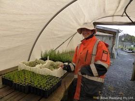 フィリップ島レンジャーの仕事を体験するボランティアプログラムで植林