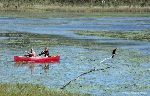 ラグーンにカヌーを乗り出して間近でバードウォッチング