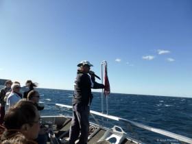 船上でクジラの生態について説明