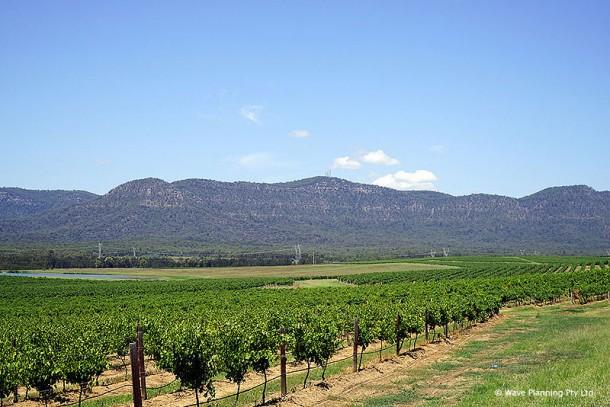 オーストラリア・ワインの歴史と共に歩んできたワイン産地ハンターバレー