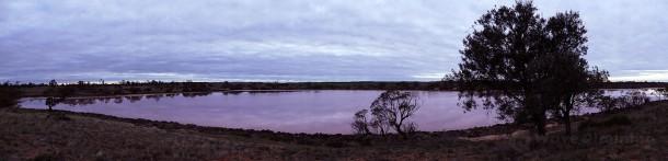 空一面が雲に覆われて朝日を拝めなかったピンク・レイク