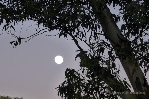 アンダー・ア・デザート・ムーンの名の通り、砂漠にぽっかり浮かんだ満月