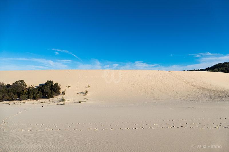 島中央部の砂丘は、世界で最も高い固定砂丘