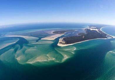 野生イルカとふれあえる大自然が魅力!世界で三番目に大きな砂島 モートン島