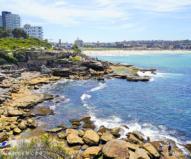 風光明媚なシドニーの海沿いを歩く散歩道 シドニー・コースト・ウォーク
