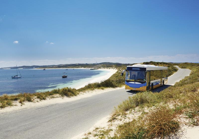 島内を巡るバス