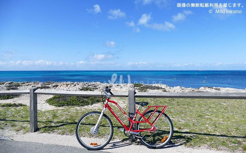 ロットネスト島はレンタサイクルが便利