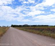 だだっ広い草原と未舗装路が続く中にポツンとある巨大パラボラ・アンテナ