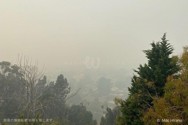 シドニー郊外まで大量の煙が流れてくることも…