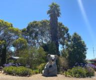 カンガルー島の固有種の他、オーストラリア固有の動物達と触れ合えるワイルドライフ・パーク(2020/1/29撮影)