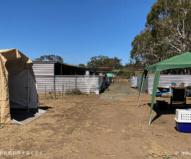 軍が造った仮設のコアラ病院とケア施設(2020/1/29撮影)