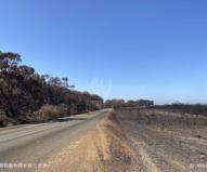 フリンダース・チェイス国立公園内を通る道路(2020/1/29撮影)