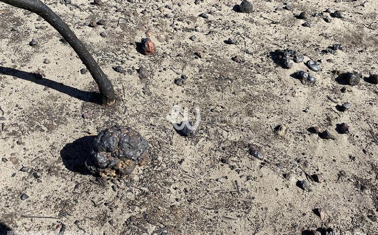石は火の熱さで溶けて丸くなってしまっている(2020/1/29撮影)