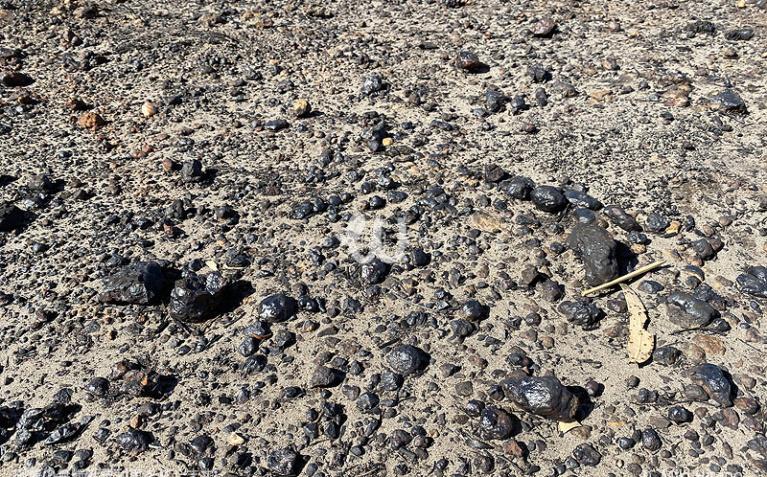 石ころはどれも火の熱さで溶けて丸くなっていた(2020/1/29撮影)